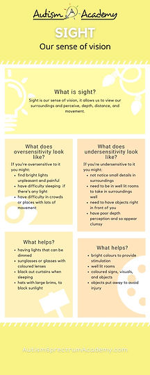 What is our Sense of Sight Infographic