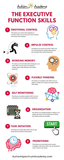 Executive Function Skills Infographic.jp