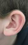 Ears hear .... why?