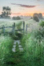 english countryside in summer .jpg