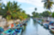 hamilton-canal-boat-trip.jpg