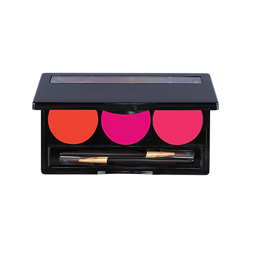 A Matte of Fact Kiss Stick Palette