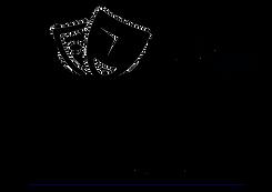 новый лого .png