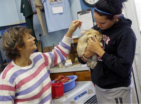 Wildlife sanctuary raises funds for intern housing program