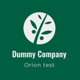Dummy company logo.png