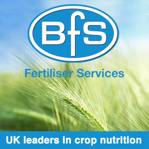 BFS Phone app ad.jpg