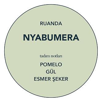 WHOLESALE: RWANDA, NYABUMERA (WASHED)