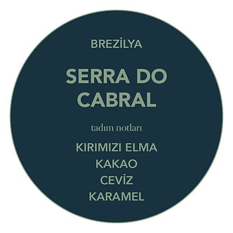 WHOLESALE: BRAZIL SERRA DO CABRAL (PULP NATURAL)