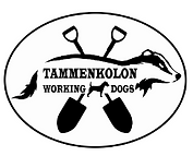tammenkolo.png