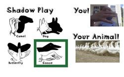 Shadow Play Webpage