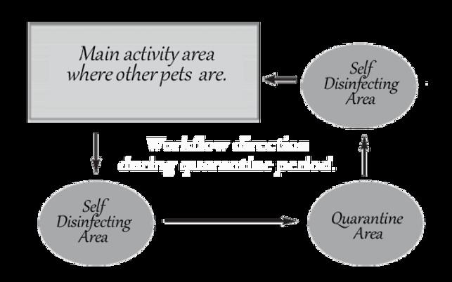 Light of Life Vet: Quarantine area work flow