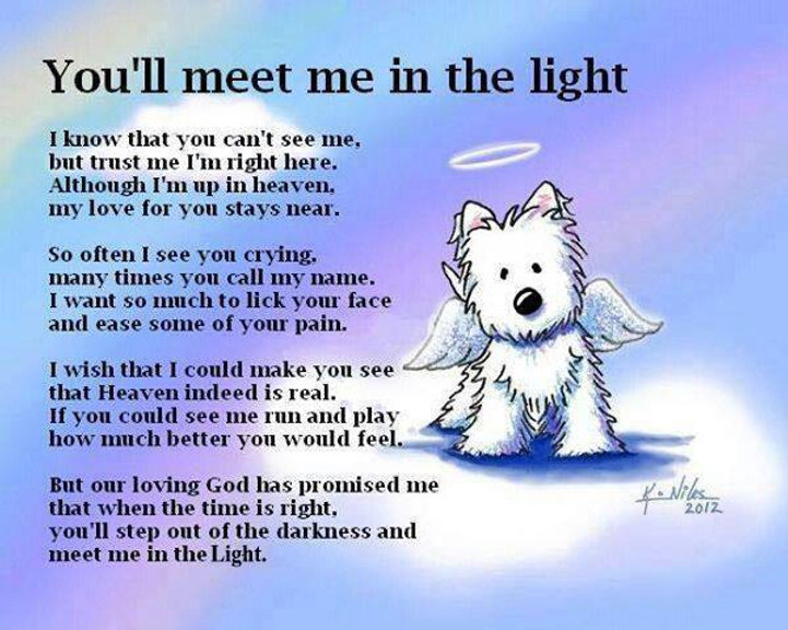Meet me in the Light.jpg