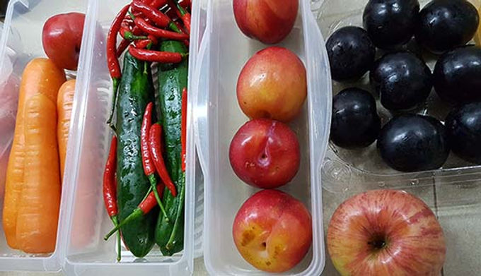 Light of Life Vet: Fruits and veg feed to the parrots in the clinic