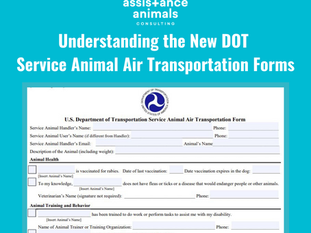Understanding the New DOT Service Animal Air Transportation Forms