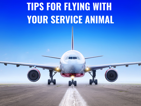 Tips for Airline Travel with Your Service Animal - Video Interview