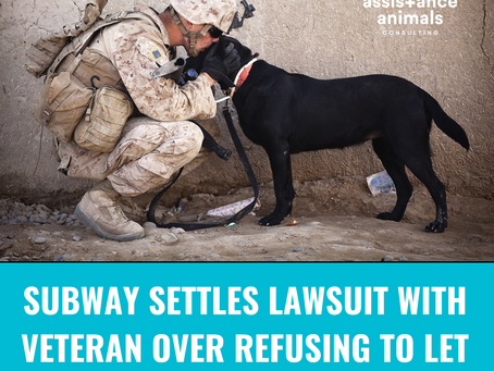 A Northern Kentucky Subway Settles Lawsuit with Veteran Over Refusing to Permit His Service Dog In