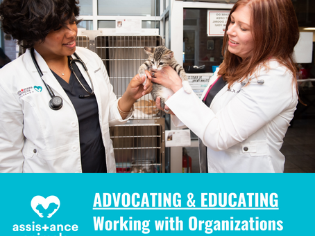 Advocate & Educate: Partnering With The Community to Advance Animal Health