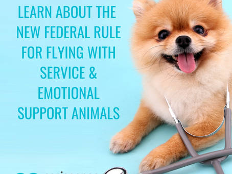 Federal Rules Have Changed: Emotional Support Animals Are Now Banned on Airplanes