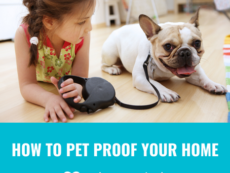 Tips to Pet Proof Your Home