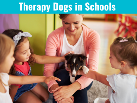 New Maryland Bill Would Allow Therapy Dogs in Schools
