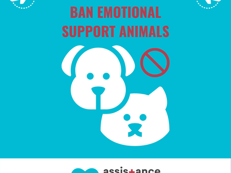 Delta & United Airlines Ban Emotional Support Animals; Form Required for Trained Service Dogs