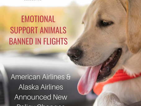 Alaska & American Airlines Ban Emotional Support Animals on Flights & Change Service Animal Policy