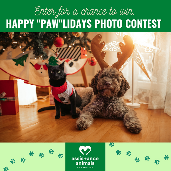 Happy Pawlidays Photo Contest.png