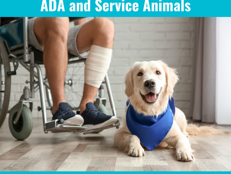 26 Frequently Asked Questions about the ADA and Service Animals