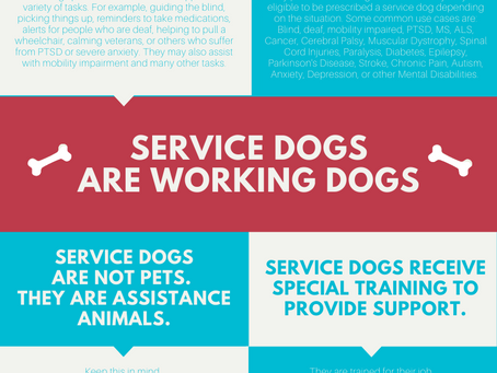 Service Dog Fact Sheet - Infographic