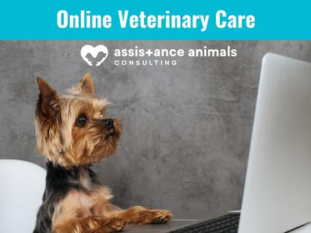 Telemedicine & the Future of Online Veterinary Care