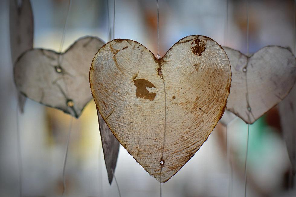 heart-314191.jpg