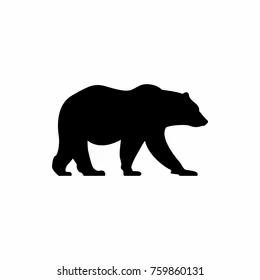 bear.webp