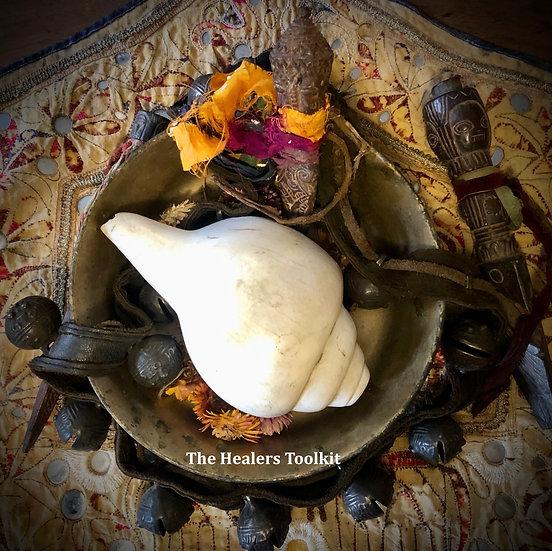 Conch Shell - Nepalese Jhankari Shankha
