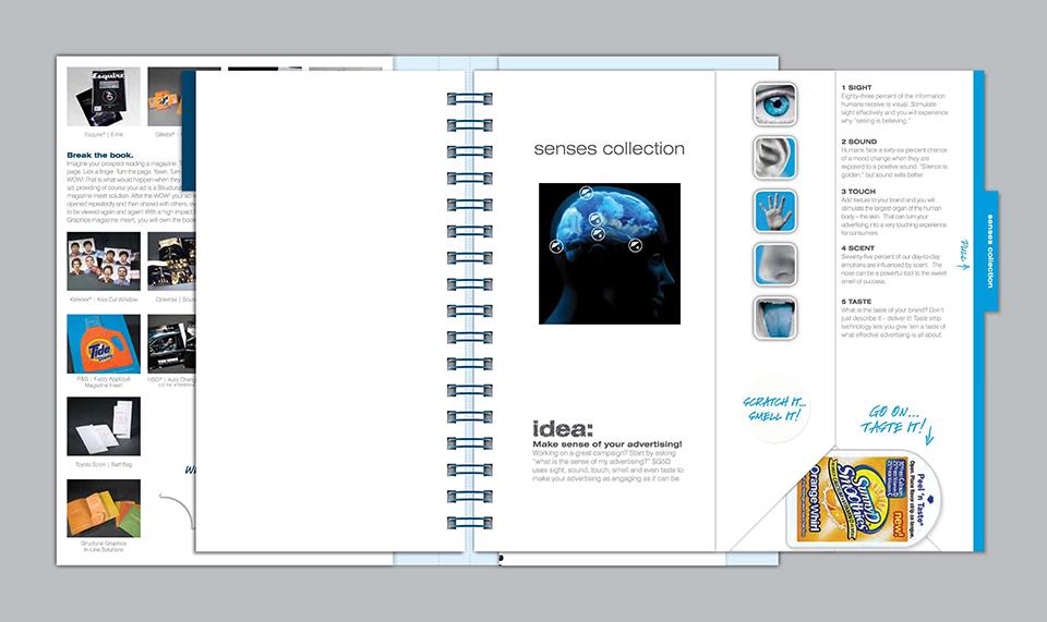 DP-SG Ideas Book
