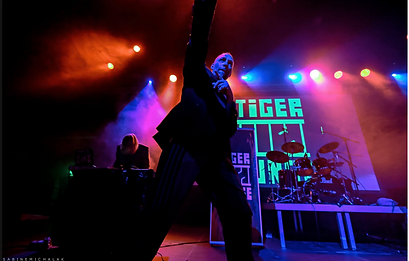 tigerjunge live.png
