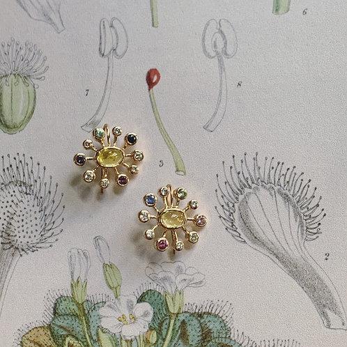 DROSERA SAPPHIRE Earrings