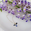 Thumbnail: FIREFLY Necklace - Sapphire
