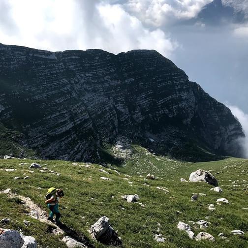 Razgledna pot na vrh
