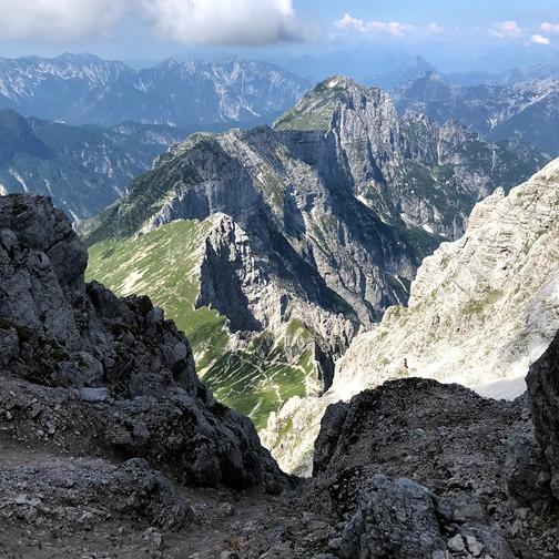 Vrh Brda
