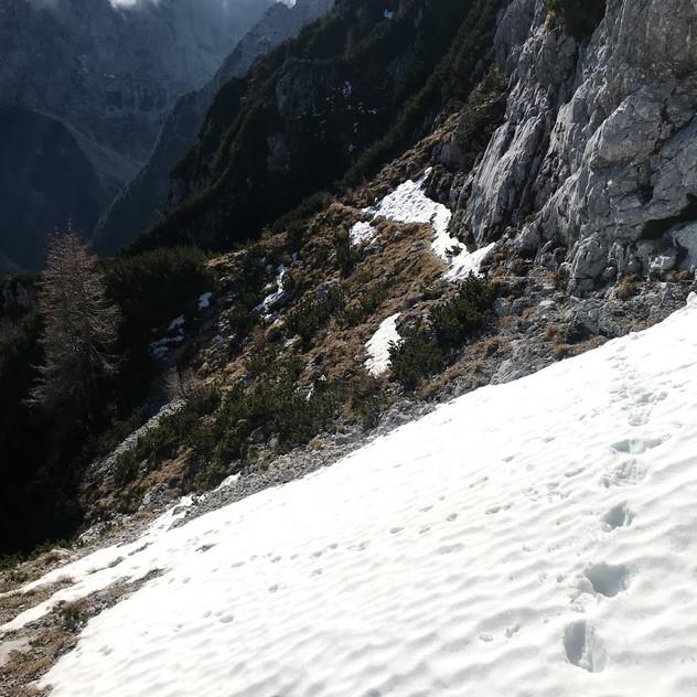 Prečenja po južnem snegu