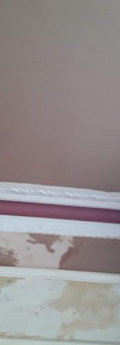 Plastering  ceiling (5).jpg