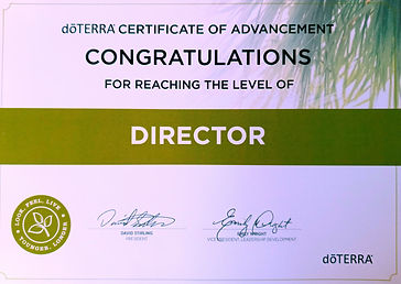 diplôme Director.jpg