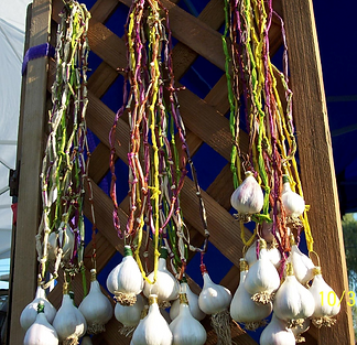 Garlic Necklace - Crafts - Festivals -  A&L Garlic Farms - Fresh Garlic