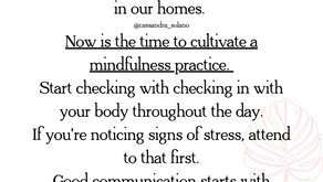 Cultivating a Mindfulness Practice