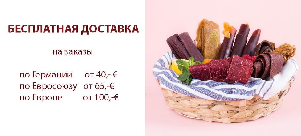 rus banner onlineshop dostavka.png