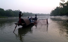 Otter_Fishermen_Harbaria_Sundarban_Natio
