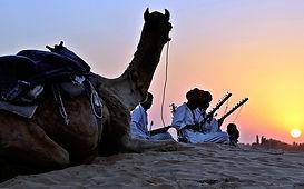 camel-2339644_1920.jpg