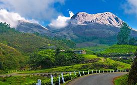 Munnar_hillstation_kerala.jpg