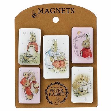 Beatrix Potter Flopsy Magnet Set