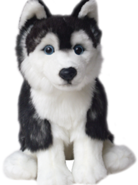12'' Siberian Husky Soft Toy